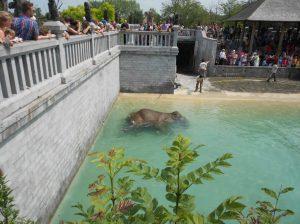 paradisio-bain3